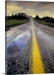 Akamina Road Alberta Canada