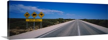 Animal crossing signs at the roadside, Eyre Highway, Australia