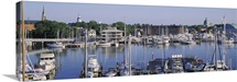 Annapolis, Annapolis MD Naval Academy & Marina, View of yachts in a bay
