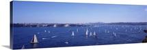 Australia,Sydney Harbor, yacht race