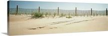 Beach Fence NC
