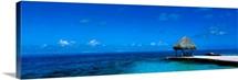 Beach Scene Bora Bora Island Polynesia