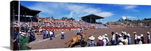 Calf Roping Event at Ellensburg Rodeo