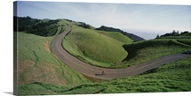 California, Marin County, Bolinas Ridge, Person cycling on the road