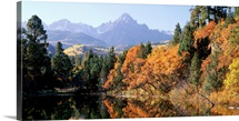 Colorado, Uncompahgre National Forest, Panoramic view of waterfront and mountain range