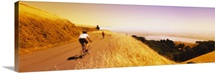 Cyclists on a road, Mt Tamalpais, Marin County, California