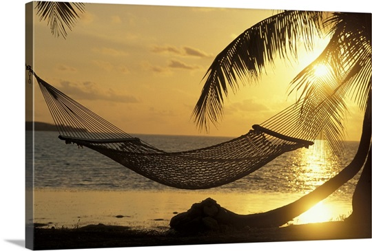 Hammock at Sunset