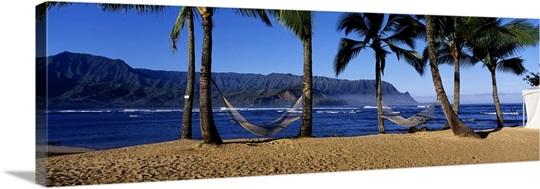 hanalei black singles Hanalei bay yacht club: the world's newest yacht club we're already in paradise on kauai so why start a yacht club.