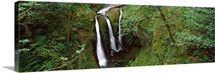High angle view of a waterfall in a forest, Triple Falls, Columbia River Gorge, Oregon,