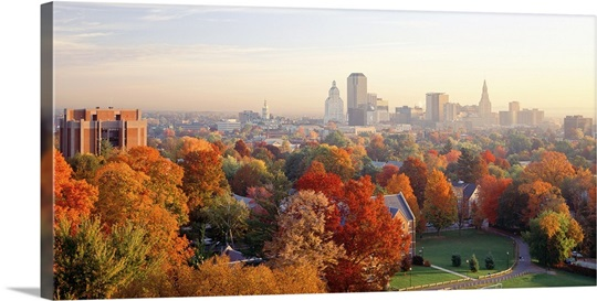 high angle view of autumn trees in a city hartford