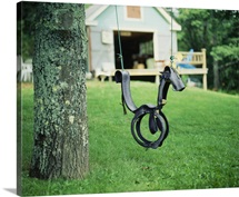 Horse Swing Nova Scotia Canada