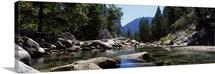 Mountain behind pine trees, Tenaya Creek, Yosemite National Park, California