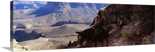 Mule riders and hikers on the trail, South Kaibab Trail, Grand Canyon National Park, Arizona,