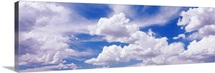 Nevada, View of Cumulus clouds in the sky