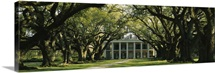 Oak Alley Plantation LA