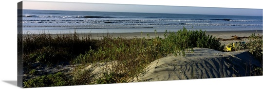 Panoramic view of a beach, Kiawah Island Golf Resort, Kiawah Island, Charleston County, South Carolina