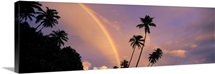 Rainbow behind palm trees, French Polynesia