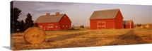 Red barns in a farm, Palouse, Whitman County, Washington State,