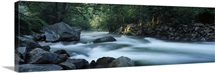 River passing through a forest, Nantahala Falls, Nantahala National Forest, North Carolina