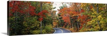 Road passing through a forest, U.S. Route 41, Keweenaw County, Keweenaw Peninsula, Michigan