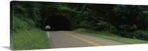 Road passing through a tunnel, Blue Ridge Parkway, North Carolina