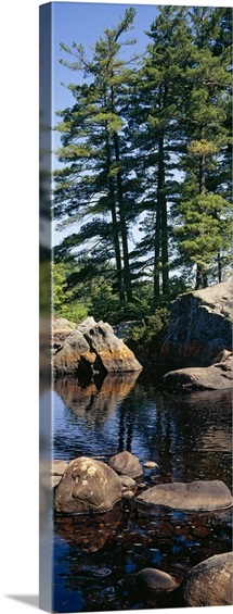 Rocks in a river, Moose River, Adirondack Mountains, New York State