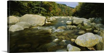 Rocks in a river, Swift River, White Mountains, New Hampshire, New England