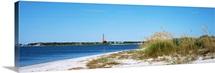 Sea oat grass on beach with Ponce de Leon Inlet Lighthouse, Smyrna Dunes Park, Florida