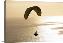 Silhouette of a paraglider flying over an ocean, Pacific Ocean, San Diego, California