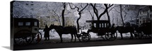 Silhouette of horse drawn carriages, Chicago, Illinois
