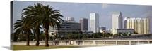 Skyline Tampa FL