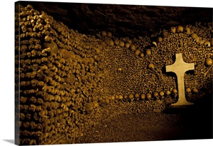 Stacked bones in catacombs, Paris, Ile de France, France ...