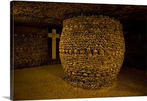 Stacked bones in catacombs, Paris, Ile de France, France ...