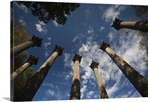 Standing columns from former plantation house, Windsor Ruins, Port Gibson, Mississippi