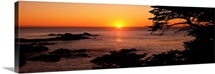 Sunset over the sea, Point Lobos State Reserve, Carmel, Monterey County, California,