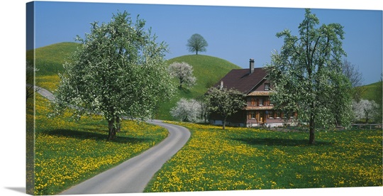 Switzerland, Zug, road
