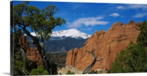 Trees in front of a rock formation, Pikes Peak, Garden Of The Gods, Colorado Springs, Colorado