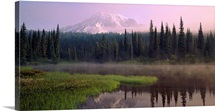 Washington, Mount Rainier National Park