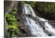 Water cascading over rocky cliffs, Laurel Creek Falls, Great Smoky Mountains National Park, Tennessee