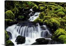 Waterfall over mossy rocks, Olympic National Park, Washington, united states,