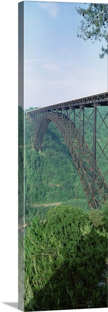 West Virginia, Route 19, Trees around the New River Gorge Bridge