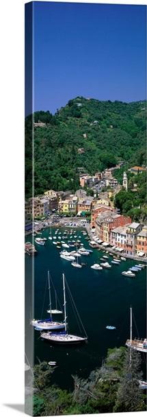Yachts on Italian Riviera Italy