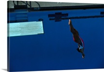 Woman diving off the springboard
