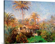 House Among the Palms