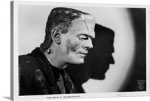 Boris Karloff B and W Bride of Frankenstein
