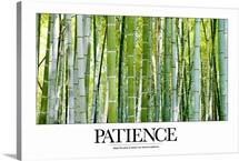 Inspirational Poster: Adopt the pace of nature; her secret is patience