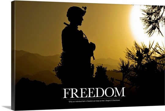 Military Motivational Poster: Freedom
