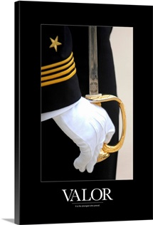 Military Poster: A U.S. Naval Academy midshipman stands at attention