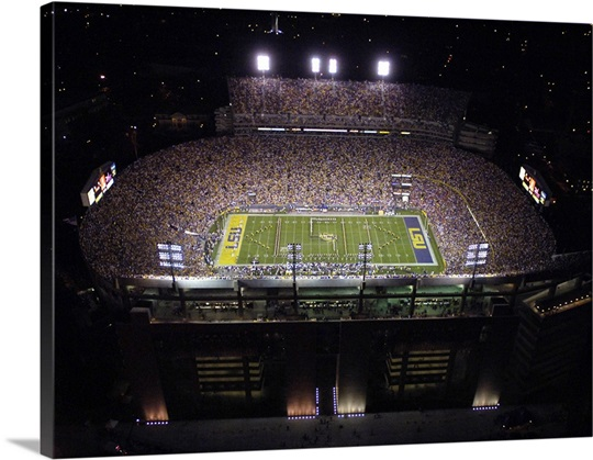Aerial View of Tiger Stadium