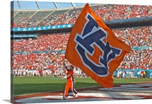 Auburn Photographs AU Flag in the Endzone